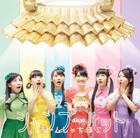 News_header_teamsyachihoko_shampooh